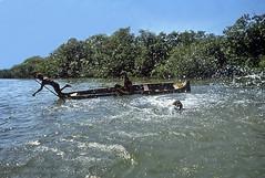 Cartagena Mangrove Woods Fishermen (gerard eder) Tags: landscape landschaft paisajes world travel reise viajes america southamerica südamerika sudamérica sudamerica colombia cartagena cartagenadeindias caribbean caribbeansea karibik caribe bocachica fishermen fishing fischer pescadores manglares mangroven mangrovewoods