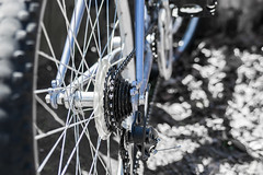 Bicycle (Marcy Leigh) Tags: 117picturesin2017 selectivecolor selectivecolour worldbicycleday bicycle bike outdoor outdoors spokes tire metal chain pedal