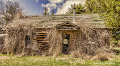 a hairy house :) (Pattys-photos) Tags: neglected decayed abandoned broken ramshackle dilapidated derelict house idaho pattypickett4748gmailcom pattypickett