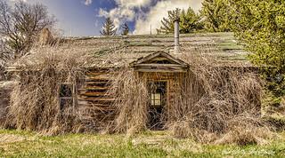a hairy house :)