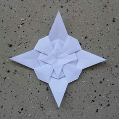 fractalization.... (Dasssa) Tags: origami paper paperfolding square tomokofuse fractalization