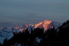 A veil.... (AngharadW) Tags: silhouette shadows shadow alps trees veil cloud snow angharadw skiing france montblanc sunset