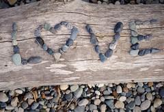 Love (michael.veltman) Tags: love log driftwood rocks pepples