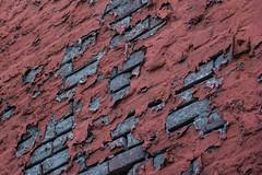 What's Underneath (PMillera4) Tags: bricks peeling paint wall
