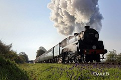19th April 2017. Flying Scotsman and Service trains at the Bluebell (Dangerous44) Tags: bluebell railway steam engine locomotive 73082 camelot standard five br