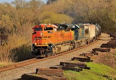 Empties For Waseca (BravoDelta1999) Tags: burlingtonnorthernsantafe bnsf railway canadianpacific cp rail milwaukeeroad milw railroad riversubdivision dakota minnesota emd sd70ace 9053 ethanol train