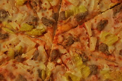 (Veee Man) Tags: nikond5000 unedited lasvegas nevada food pizza sausage peppers cheese slice pizzasauce