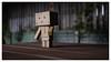 DANBOARD (whwh) Tags: australia brisbane danboard fujifilmxf23mmf2rwr fujifilmxt2 queensland toys