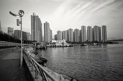 Tsuen Wan Waterfront 2015 (chauraymond) Tags: fujigw690 shanghaigp3 blacknwhite
