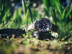 Monster in the nature (Ch4nce) Tags: seiko watch monster olympus nature 20mm bokeh knife squid crkt grass red black
