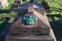 _IAW9355 (IanAWood) Tags: lbofbrent london londoncemeteries nikkorafs58mmf14g nikondf walkingwithmynikon willesden willesdennewcemetery