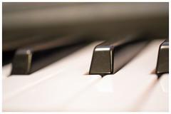 52 weeks project/52 Weeks of Pix 2017: ANYTHING MUSIC (GadgetHead) Tags: week17 1752 17 keyboard keys 52weeksofpix2017 blackwhite music nikon nikond3100 d3100 40mm 40mmf28 afsdxmicronikkor40mmf28g dslr 2017 dof 52weeksproject