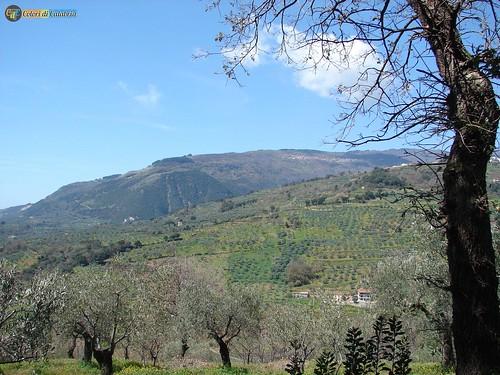 CZ-Lamezia Terme-Monte S Elia visto da Bucolia_L
