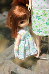 In the Garden 07 (Licca-chan) Tags: autumn amy jasmine gloria honey licca