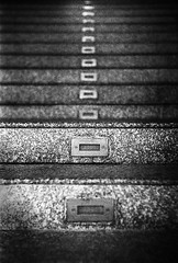 (Alexandre Moreau/Hydroquinone) Tags: stairs 50mm dof kodak trix steps depthoffield d76 vietnam f2 kiev4 jupiter8 epsonv700 phumyhung epson700 alexandremoreau