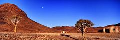 Close to Sinclair Guestfarm (hapePHOTOGRAPHIX) Tags: africa moon mond desert luna hasselblad afrika desierto namibia xpan wste namib kcherbaum quivertrees aloedichotoma hapephotographix 516nam 516xpn