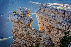 Grand Canyon_vignette (S. Peterson) Tags: arizona grandcanyon southrim stevepeterson yavaipaipoint