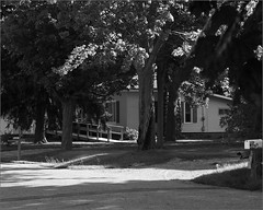 Access (joeldinda) Tags: light shadow bw house tree ramp raw frontyard joeldinda 1v1