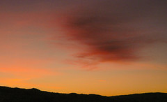 winter sky (tsd17) Tags:
