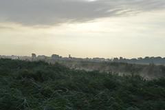 River Thurne near Ludham (mre1965) Tags: mist river reeds dawn norfolk norfolkbroads