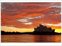 Opera sunrise (Jong Soo(Peter) Lee) Tags: sunrise sydney australia redsky sydneyharbour sydneyoperahouse sydneysunrise sydneyoperahousesunrise