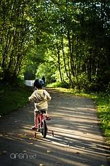 No looking back (arsn.r3d) Tags: park green glass bike bicycle 35mm vintage pentax takumar foliage manual smc kx smctakumar35mmf20