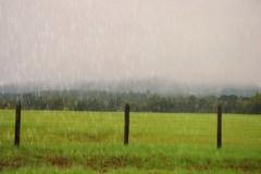 And the rains fell (stilesathelake) Tags: sky field rain clouds pasture