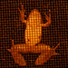 frog on screen