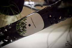 MUSIC IS GREEN d'Oxana au Re-Design Boxon.