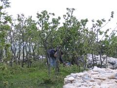 IMG_0789 (T.J. Jursky) Tags: europe croatia bunker antenna adriatic dalmatia hamradio radioamateur kastela 144mhz malacka 9a7pjt