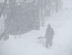 (Sarah-Vie) Tags: hiver neige img tempête 0316