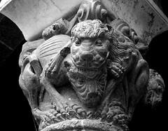 Mostruose creature (qoanis.27) Tags: duomo prato chiostro capitello