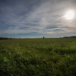 Schwalingen - Die