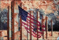 In Remembrance: War (FiddleFlix) Tags: usa memorial flag northcarolina multipleexposure garner veterans veteransmemorial americanveterans paulmalcolm garnerveteransmemorial