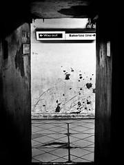 Tube (forayinto35mm) Tags: uk blackandwhite london film 35mm 50mm minolta metro transport tube grain ishootfilm ilfordhp5 35mmfilm londonunderground londontube publictransport ilford lambeth thetube bakerlooline minoltadynax5 blackandwhitefilm dynax5 filmisnotdead believeinfilm