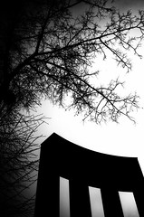 (15/21) Project ''Lviv overhead'' (nerapavlo) Tags: filmisnotdead lvivoverhead lviv плівка city lwow lemberg чб lvov чбфото leopolis ukraine львів україна bnw monochrom noir film filmphotography analog analogphotography 35mm 35mmfilm kodak project monochrome analogue kodakfilm urban bw sky lines