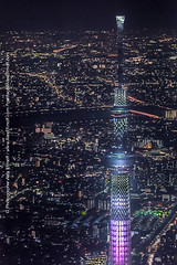 Skytree スカイツリー - 東京 Tokyo views (Alex Efimoff) Tags: 日本 japan spring winter white 専門家 professional photo day 夜 night stock sale buy commercial print publication 旅行 travel 綺麗な beautiful 建築 architecture town old buildings houses urban aerial skytree スカイツリー