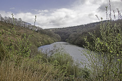 The Quiet End Of The Lake (me'nthedogs) Tags: upton wimbleball lake reservoir exmoor somerset