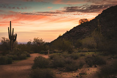 20170110-DSC_4516 (lilnjn) Tags: arizona landscape southwestunitedstates travel unitedstates sky sunrise whitetank