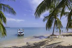 Passikuda Beach (naveenekanayaka) Tags: srilanka passikuda pasikuda beach travel blue sky clouds coconut trees sand