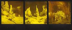 Bryce Triptych (ltpaperhouse) Tags: ltpaperhouse mint 670s polaroid film theimpossibleproject sx70 instantphotography duochrome 600