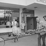 04 Apr 1975, Saigon, South Vietnam --- Survivor Grieves thumbnail
