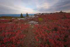 Above the Parted Sea of Red (Ken Krach Photography) Tags: westvirginia dollysods