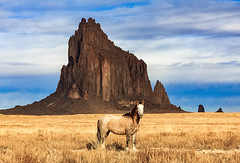 Shiprock and the Lone Horse (Dave Toussaint (www.photographersnature.com)) Tags: shiprock horse wild animal geology rock google getty explore interesting interestingness cc creativecloud photoshop adobe topazlabsdenoise nm newmexico usa nature travel landscape scenic raw image canon 60d photo photographersnaturecom photographer picture 2015 november davetoussaint