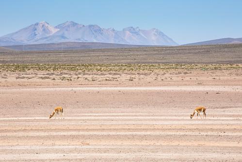 Peru_BasvanOortHR-98
