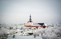 The Town Hall of Narva, Estonia (Kalev Lait photography) Tags: narva boarder tower roofs winter snow vignette city cityscape buildings estonia centre peak travel high view frost