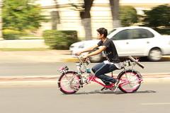 Sunday cycling - Paseo de Montejo, Merida, Mexico (Dis da fi we (was Hickatee)) Tags: merida mexico mexican cycling bike cycle family fun day out