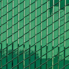 green grid (msdonnalee) Tags: minimalism minimalismo minimalisme green grid verde grön vert verte pattern abstractreality 11