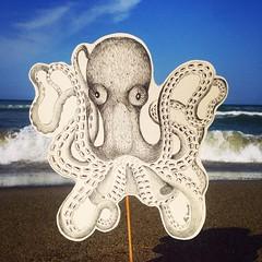 HUGE OCTOPUS (Carola Ghilardi) Tags: illustrazione illustration octopus polipo paper pen pencil nature sea summer beach sand animal animals carolaghilardi