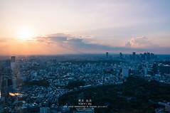 Tokyo City Skyline (Pop_narute) Tags: tokyo city skyline cityscape evening sunset sky cloud japan